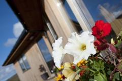 Flowerdetail-1310
